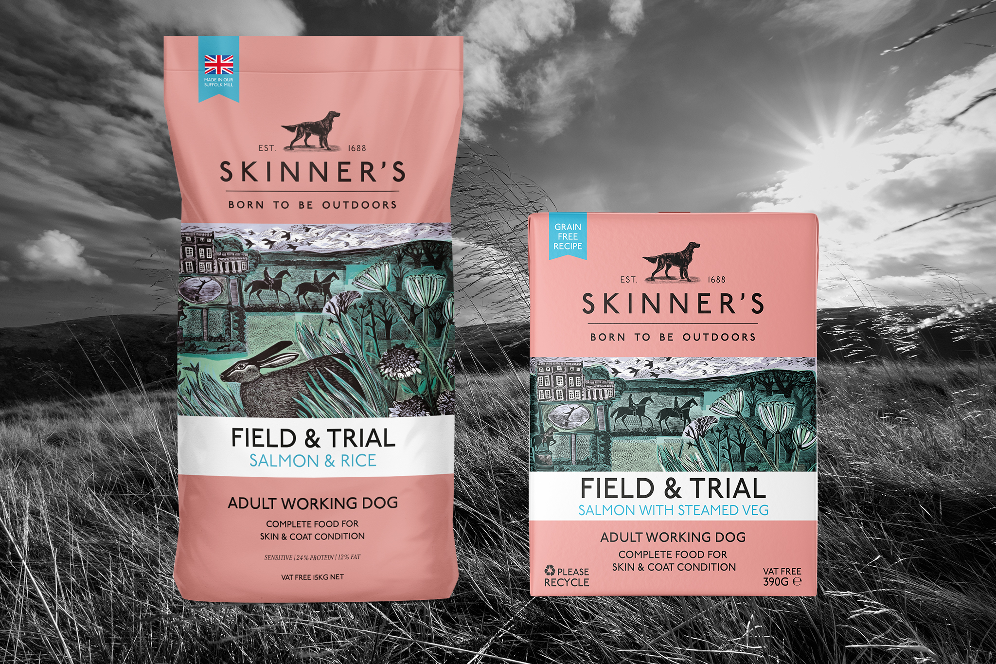 How to feed wet and dry dog food together