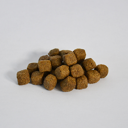 Skinner's Field & Trial Lamb & Rice dry dog working dog food